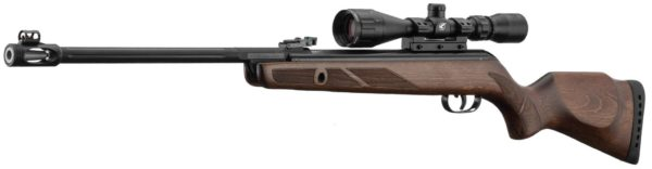 carabine-gamo-hunter-440-as