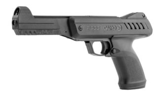 gamo p900 gunset
